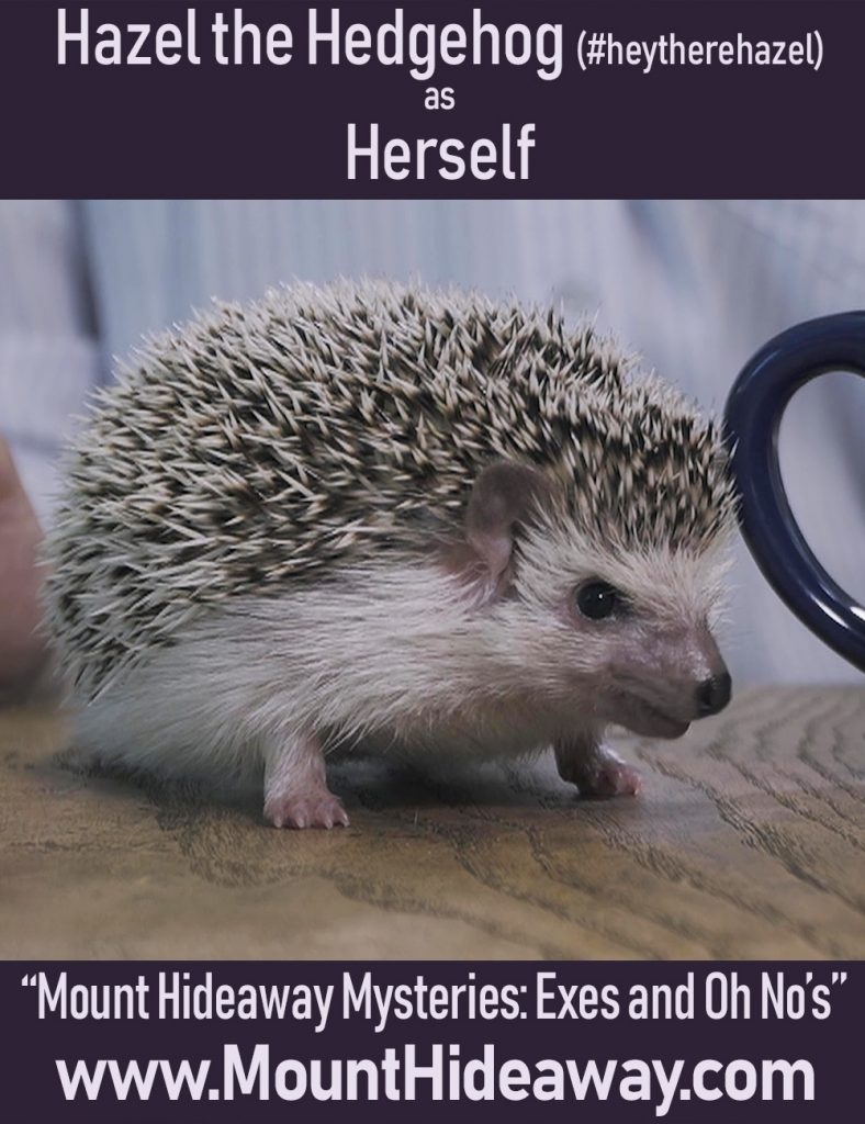 Hazel the Hedgehog